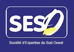 SESO Diagnostics Immobiliers, Professionnel du Diagnostic Immobilier en France
